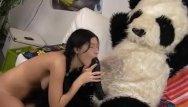 Teddy bear hamster sex Party with a teddy bear over hot sex