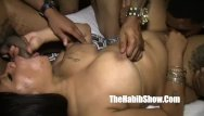 Phat chubby young booty Phat booty snicka gets banged out by bbc kin