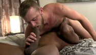 Black cock white gay Hairy white daddy can def take this muscle big black dick