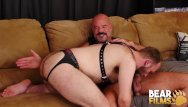 Bear community gay jack radcliffe Bearfilms cub harper davis barebacked by bear jack dyer