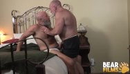 Big hairy gay bear cocks Bearfilms nick maduro sucked off and barebacks old cub hole
