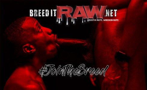 BreedItRaw