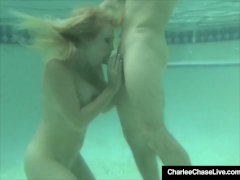 Scuba Milf Charlee Chase Attacks A Big Hard Cock Underwater!