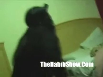 тихуана карлик трахает волосатые киски