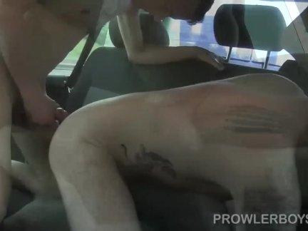 Коса обжаривания Молодой Алекс Харди