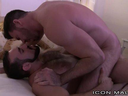 Большой сексуальный Роговой волосатые папа свопы парень после бара