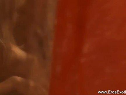 Сладкий межрасовый осла играть из Индии
