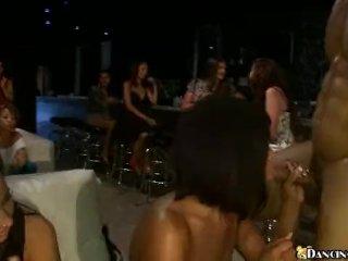 Big cock on bimbo party