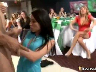 Crazy party sluts sucking cock